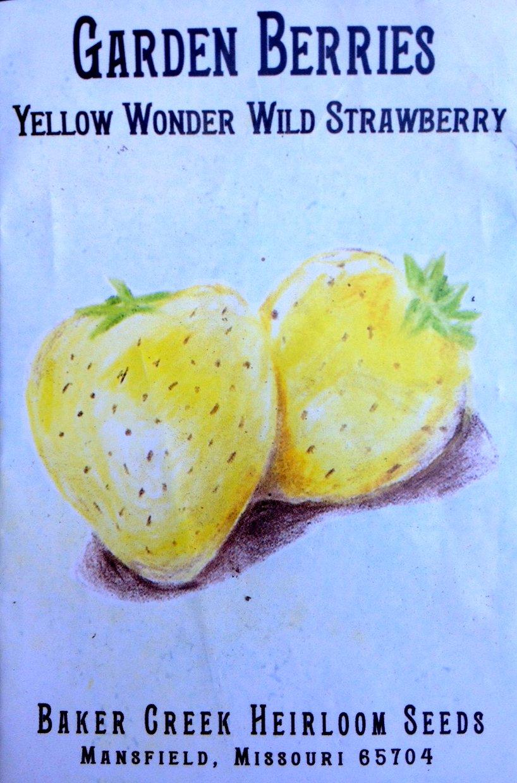 Yellow Wonder Wild strawberry seed packet