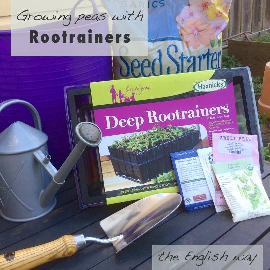 suppliesforgrowingpeaswithrootrainers