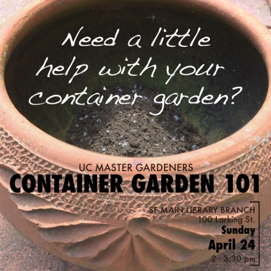 Master Gardener container garden class