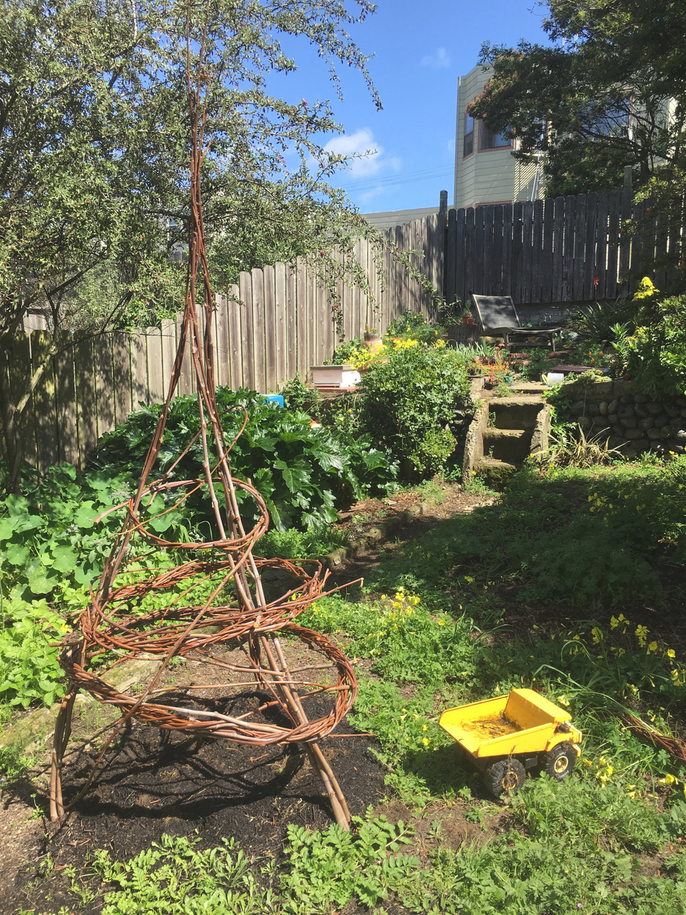 I employed a bit of freestyle weaving in the creation of this sycamore whip trellis for Scarlet Runner beans.