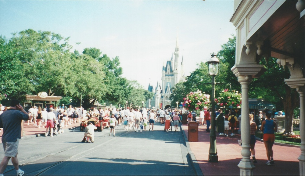 The trees provide shade, but also a barrier between Main Street and Cinderella Castle