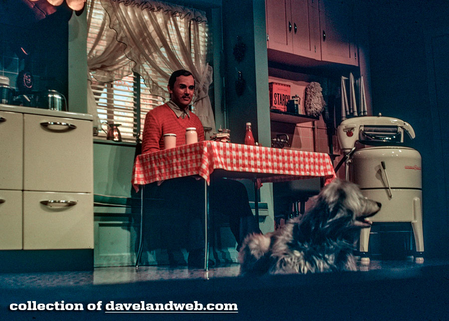 No, I didn't steal this image from  www.davelandweb.com  why do you ask?