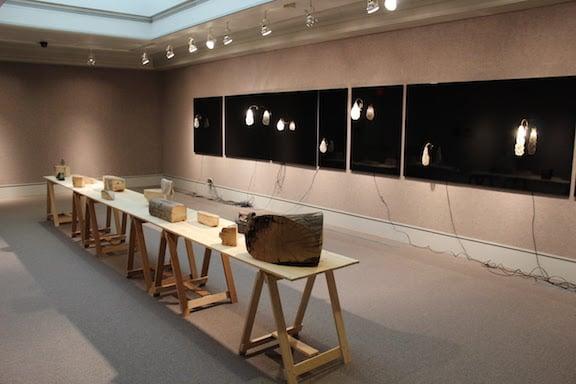 Installation view of Nancy Friedemann-Sanchez's Travelers & Settlers.