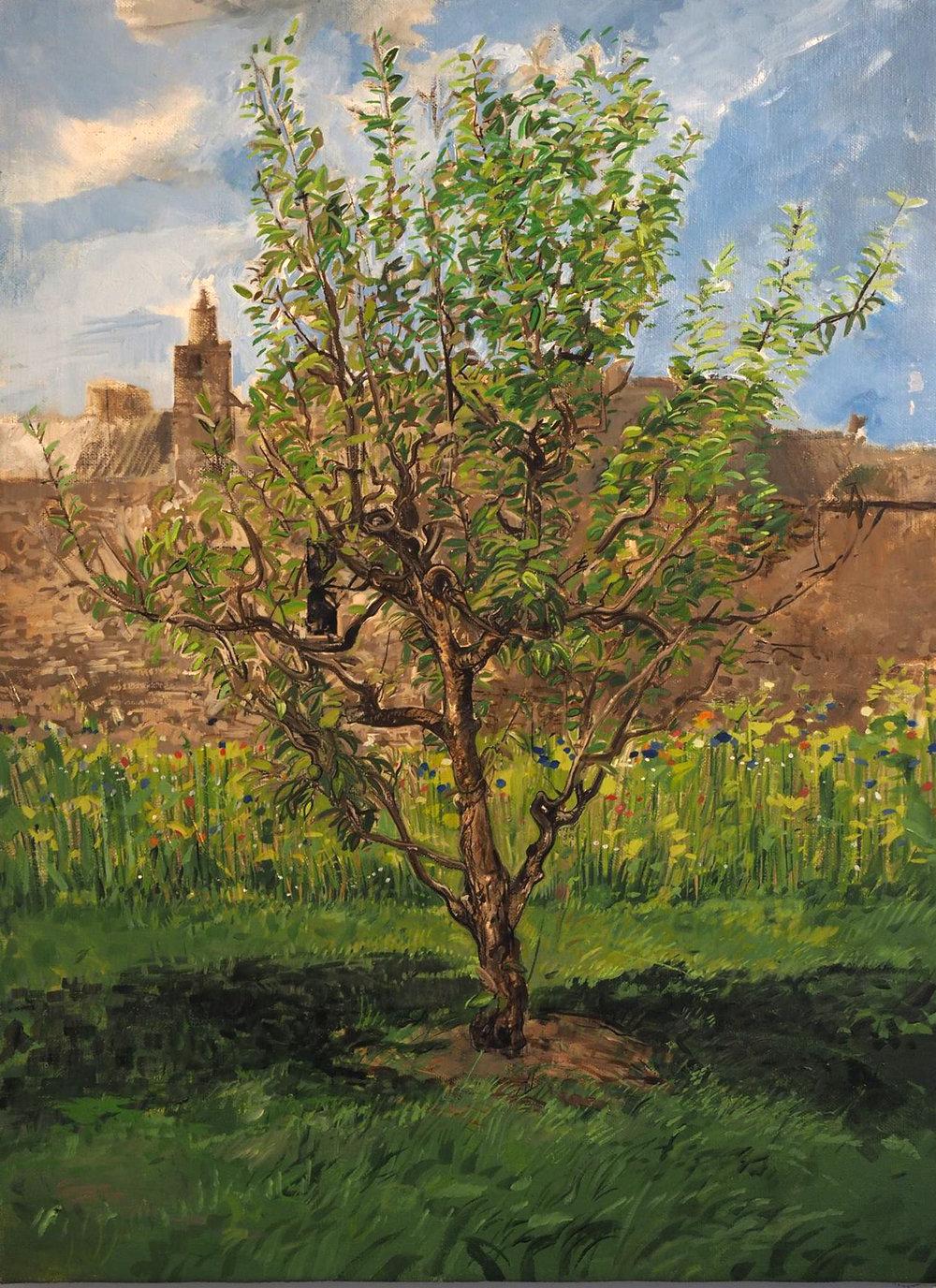 """Pear Tree,acrylic on canvas, 30"""" x 40"""" image courtesy of Jave Yoshimoto"""