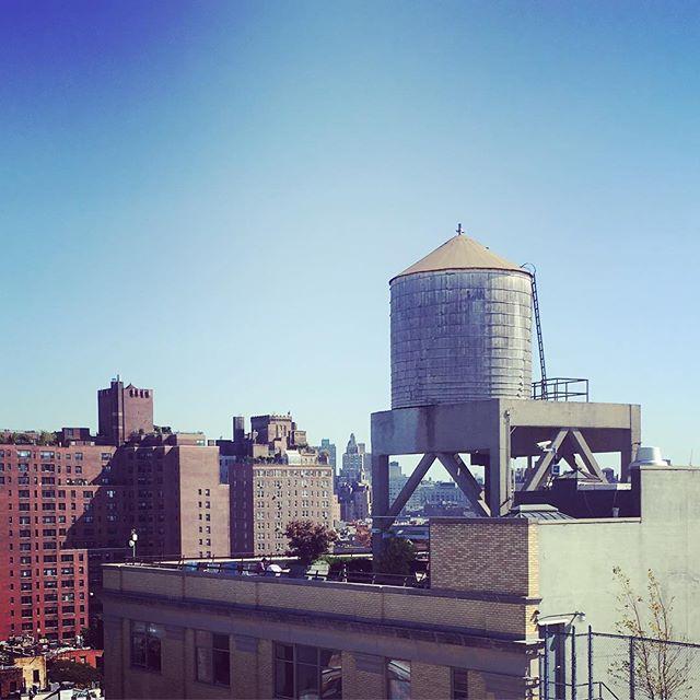 Back in NYC. Beautiful Fall day❤️#elliotmann #elliotmannnyc #nyc #nottooshabby