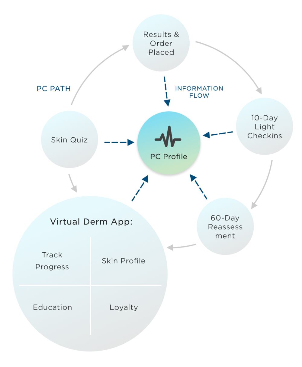 The Virtual Dermatologist Ecosystem