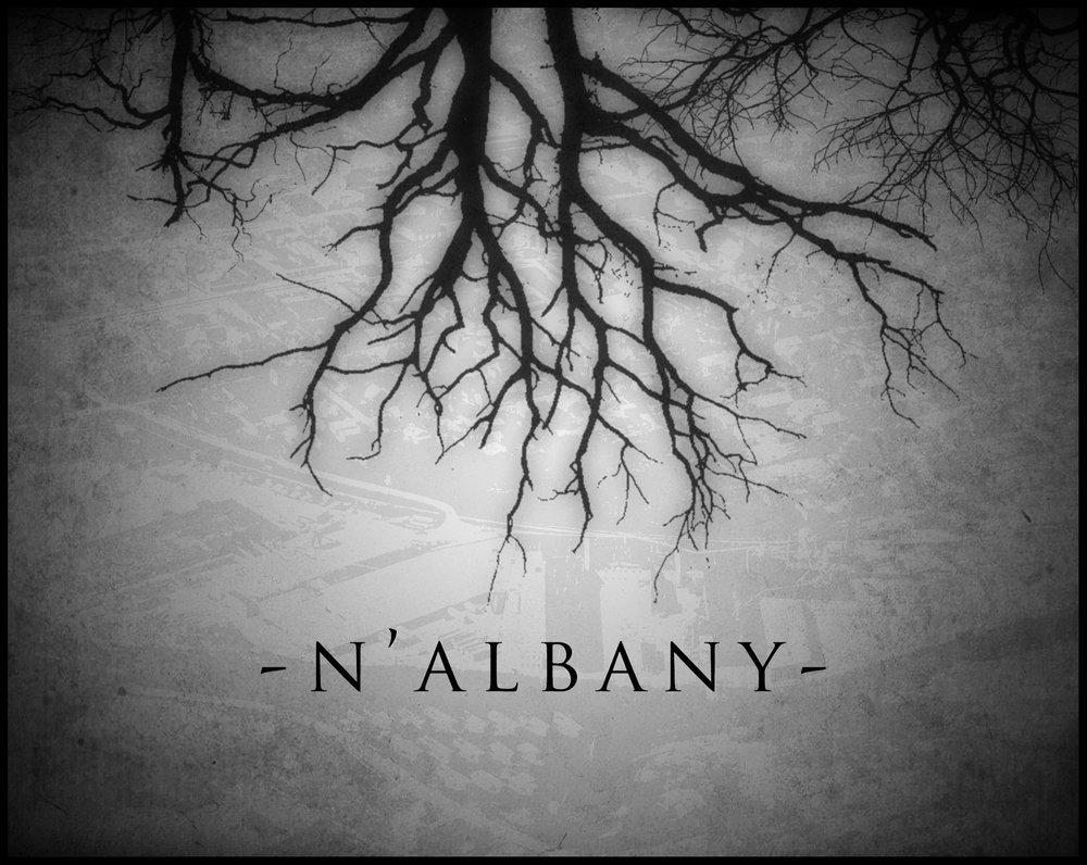 Albany COVER.jpg