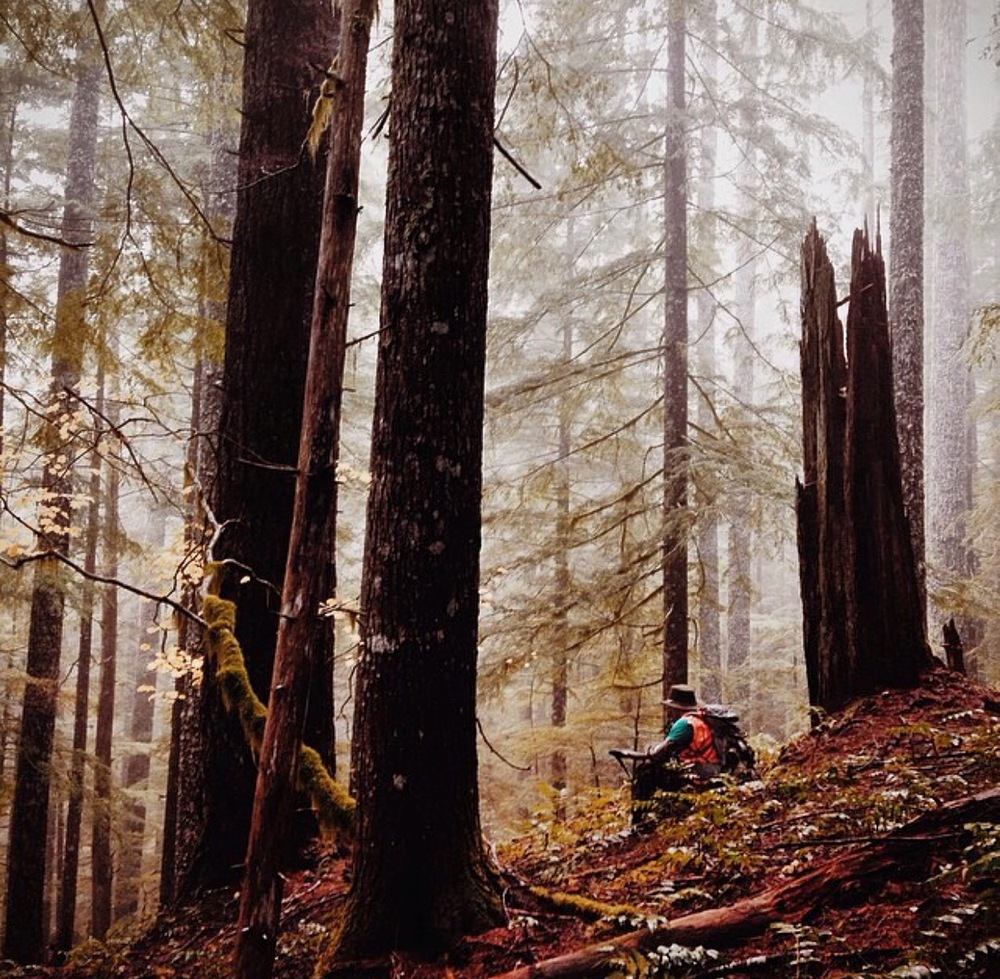 November elk hunting in Washington State provides some amazing moments in the forest.  Here a friend of mine takes a break to watch the fog roll through.