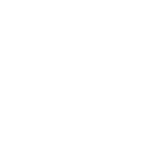 The Utility Company