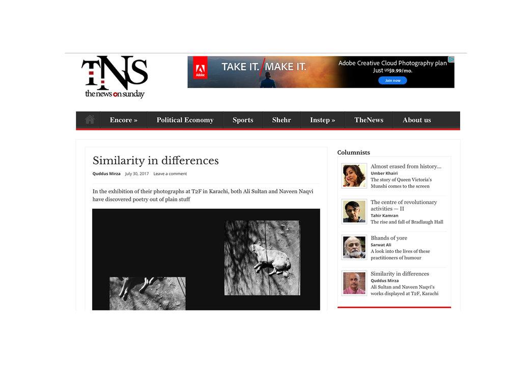 TNS_header.jpg