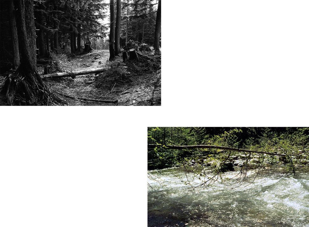 landscapes_tiles.jpg