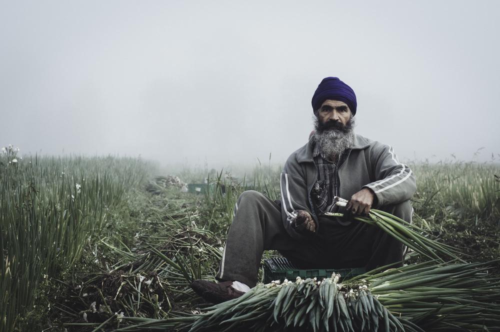 Indianworkers-24.jpg