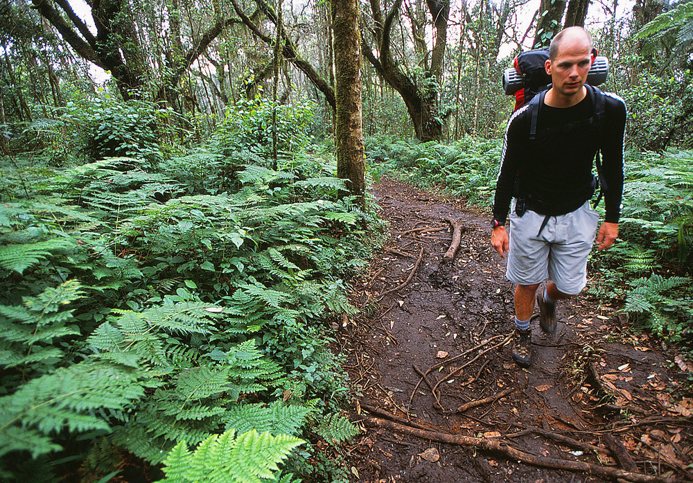 Goran Kropp on the trail to Kilimanjaro