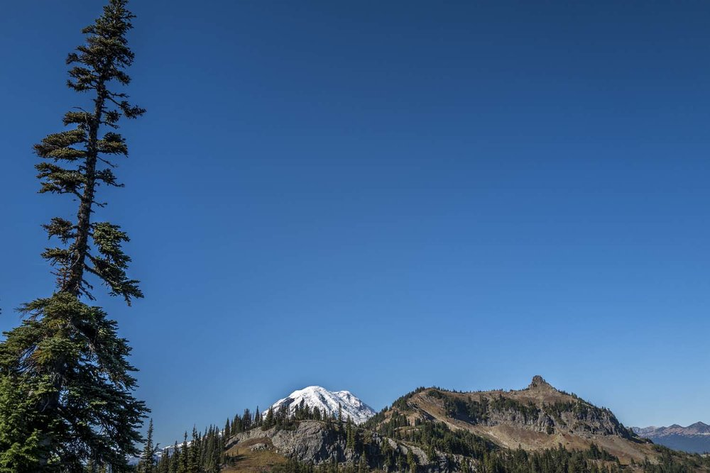 Rainier_Naches_skyline_1.jpg