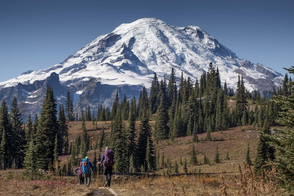 Rainier_trail_1.jpg