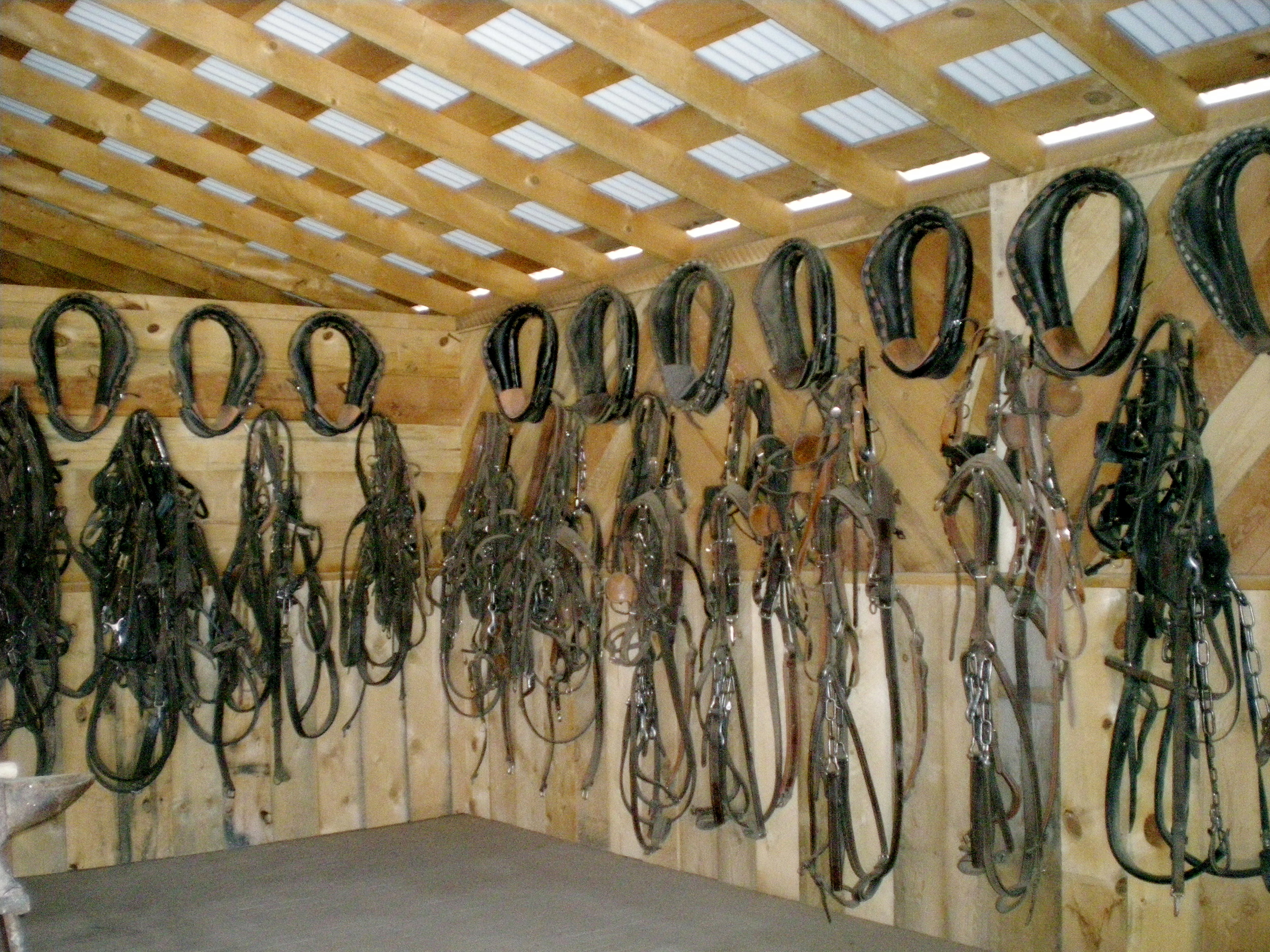 Tc Movie Horses Wiring Harness Harnesses