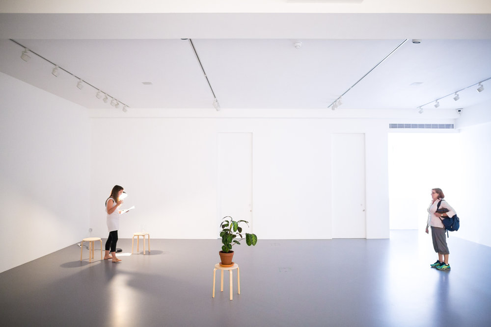 1372549 2016, Performance and installation with furniture, plant, and water, 35' x 27' x 16' Viewers were asked to stay in the gallery only for as long as they could hold their breath. The performer alternately read texts referencing the breath and the human body, while watering a plant and drinking from a jug of water. The piece's title refers to the number of number of human breaths it would take to fill the gallery space at Nahmad Projects, where the performance took place.