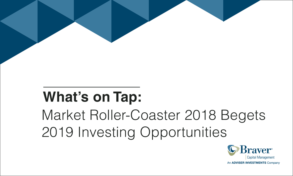 Market Roller-Coaster 2018 Begets 2019 Investing Opportunities.png