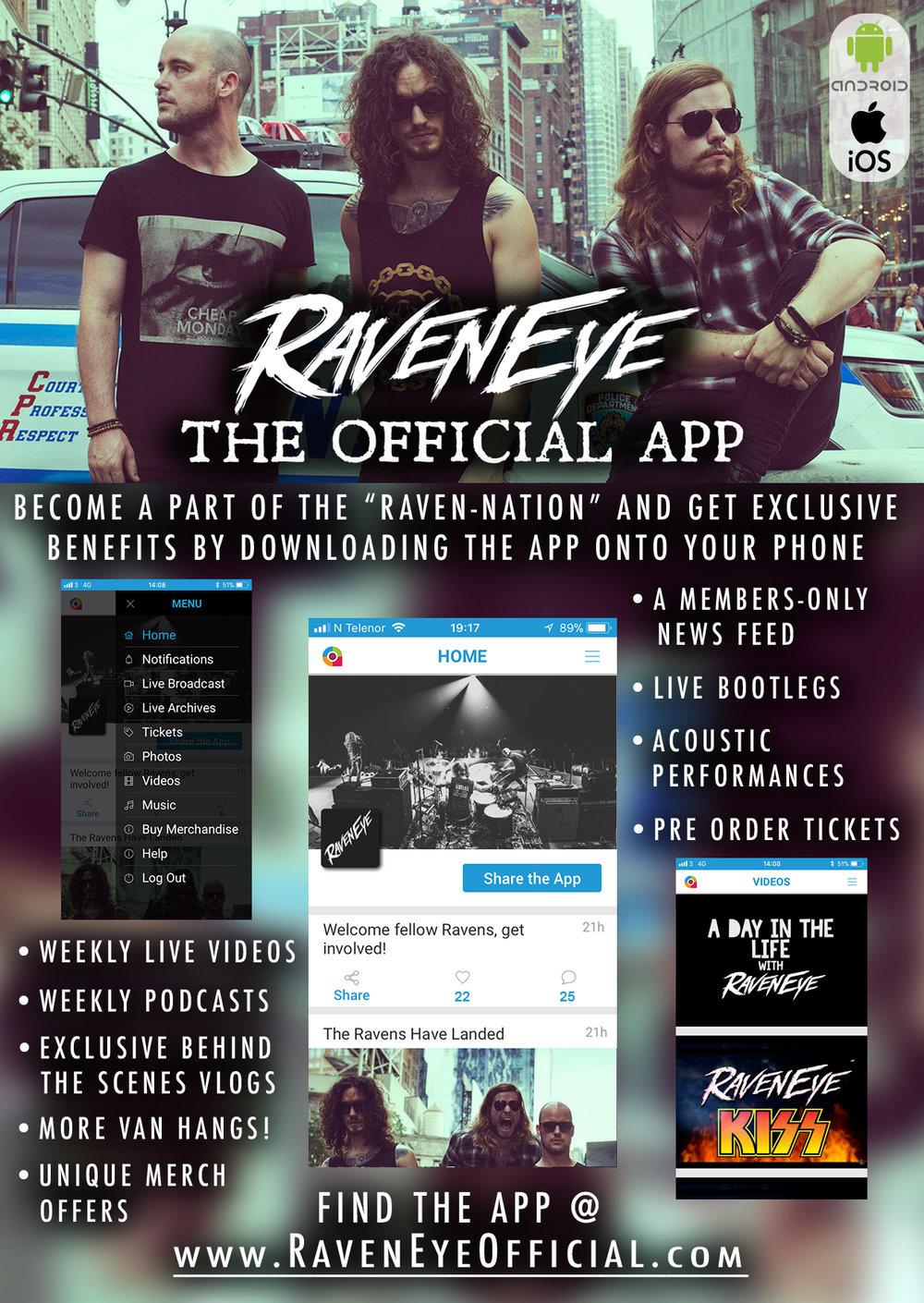 RavenEye App2 flyer.jpg