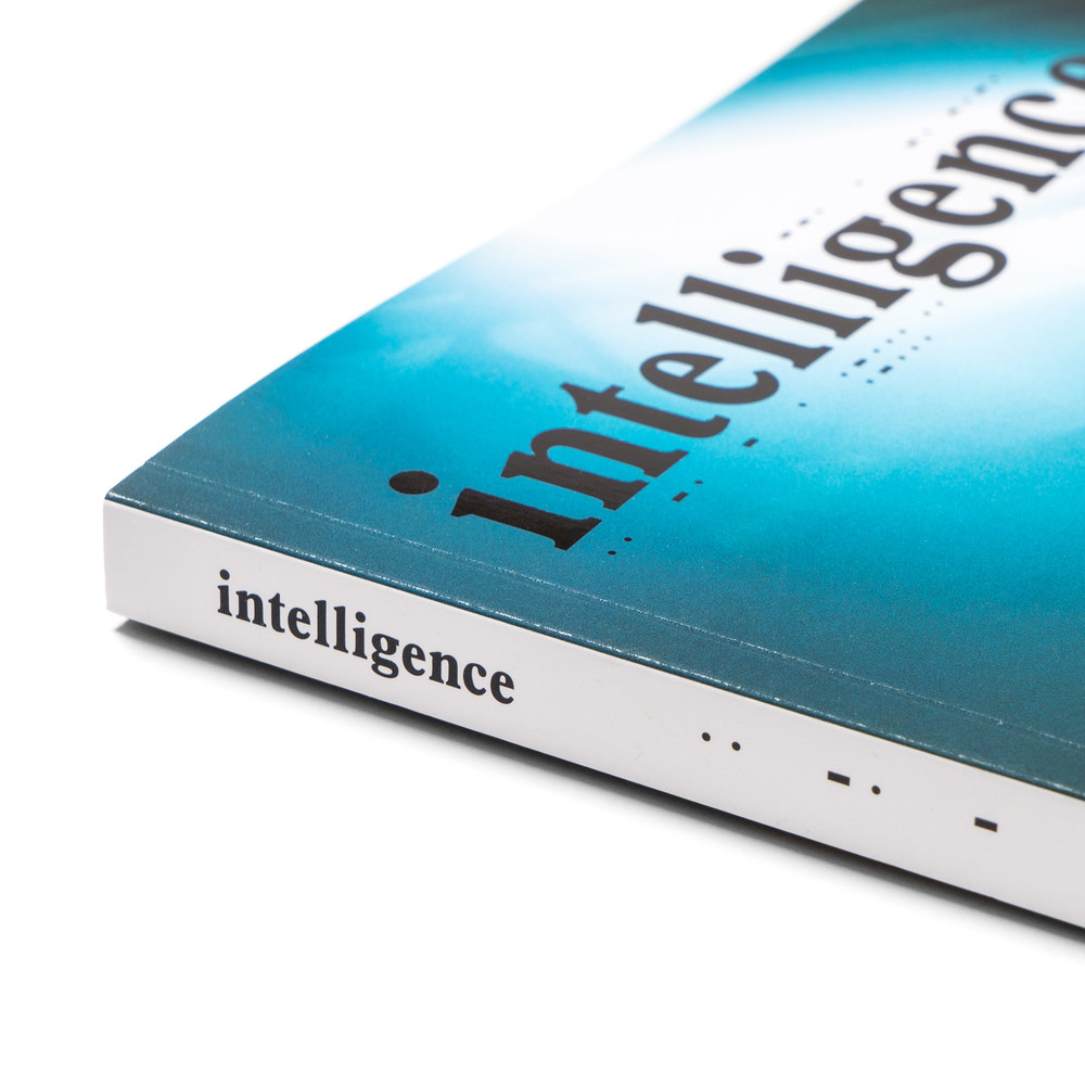 intelligence-Magazine-Issue-2-Sk8thing-2.jpg