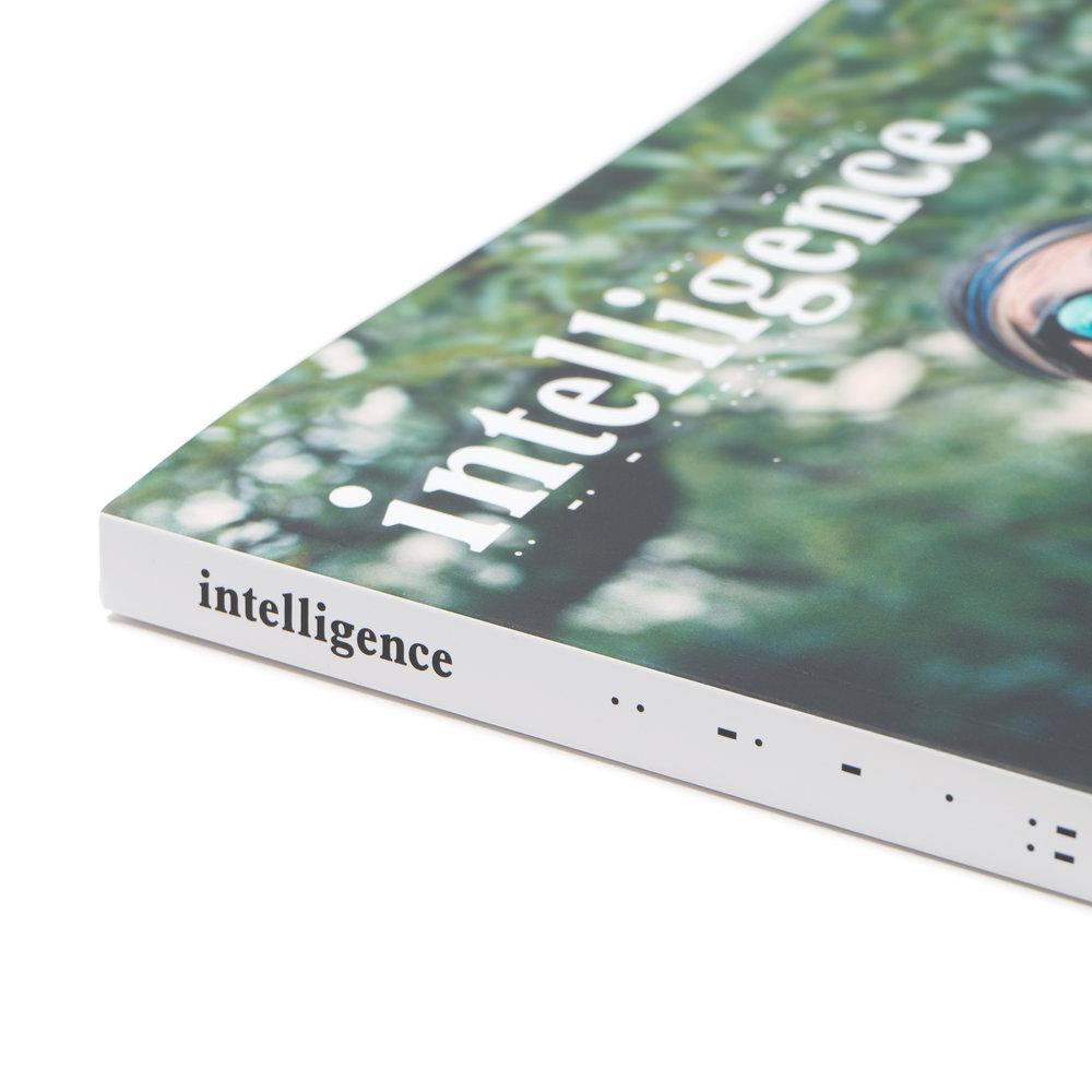 intelligence-Magazine-Issue-03-Daisuke-Yokoyama-2.jpg