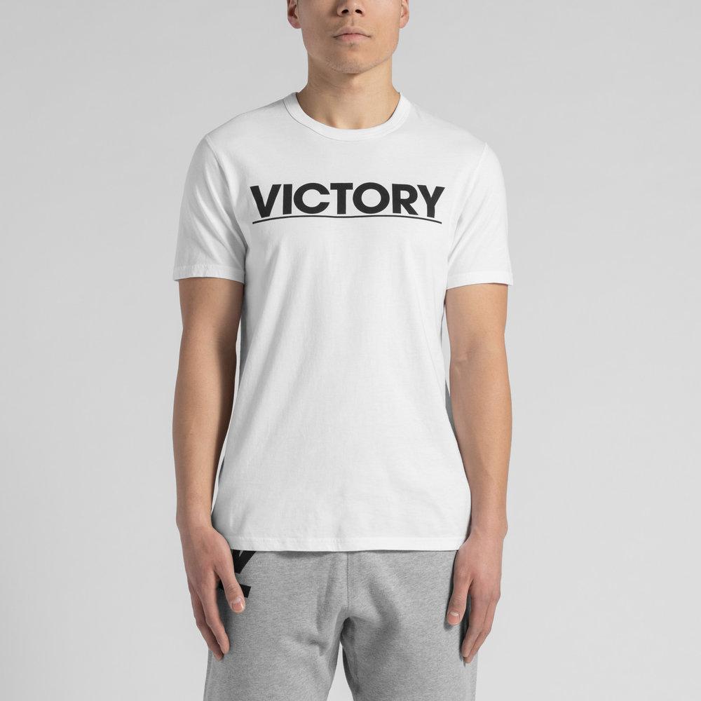 RC_VICTORY_MODEL_11.jpg