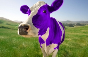 Purple Cow image, Davis Advertising.