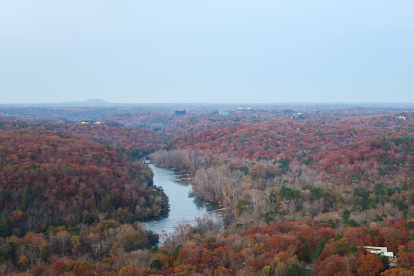 I loved seeing the fall colors from up above.
