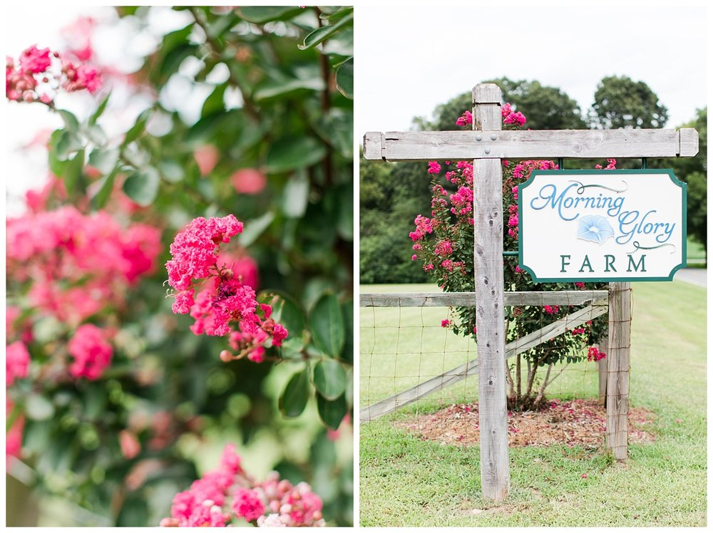Bradeys_Abby Breaux Photography_Morning Glory Farm_0001.jpg