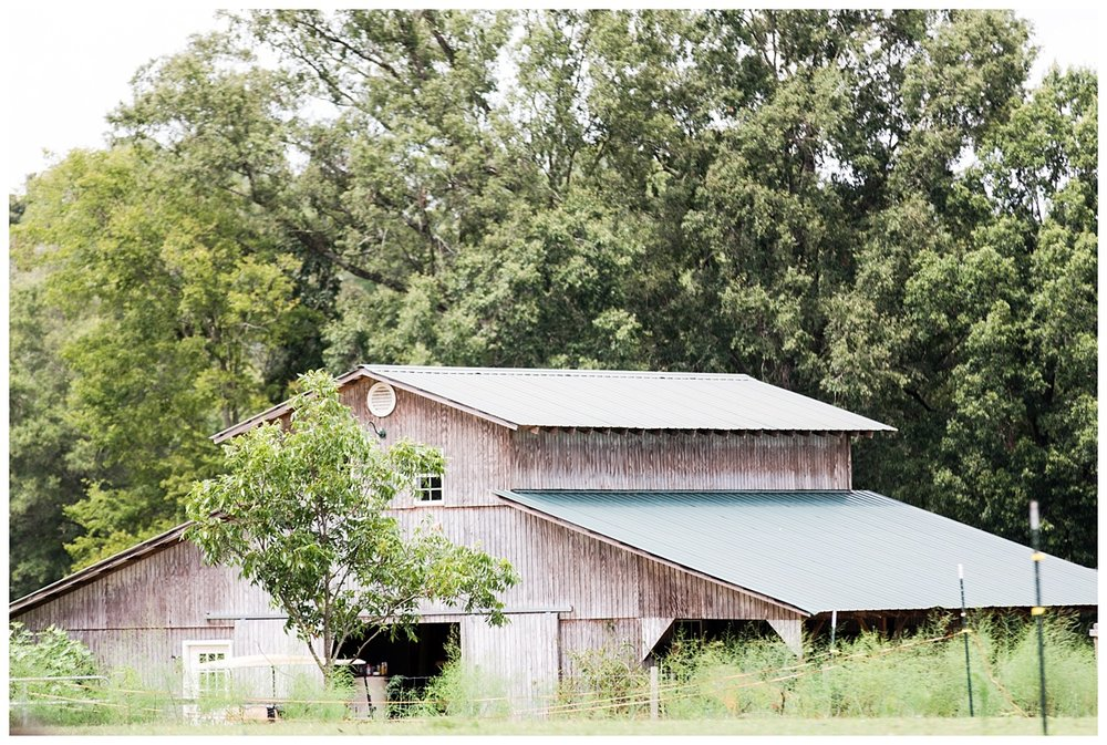Bradeys_Abby Breaux Photography_Morning Glory Farm_0055.jpg
