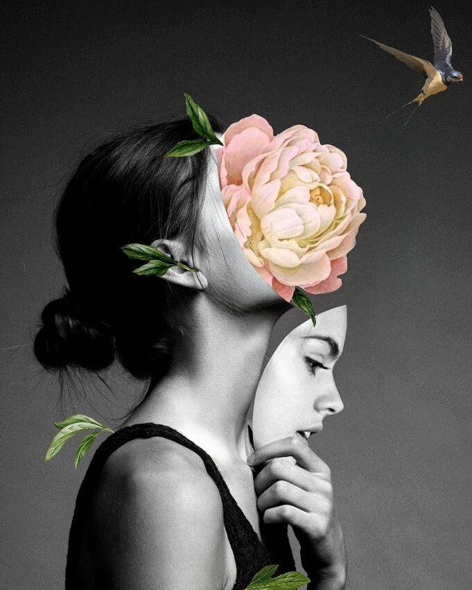 Colagem da artista Luciana Aranha (@luspider)