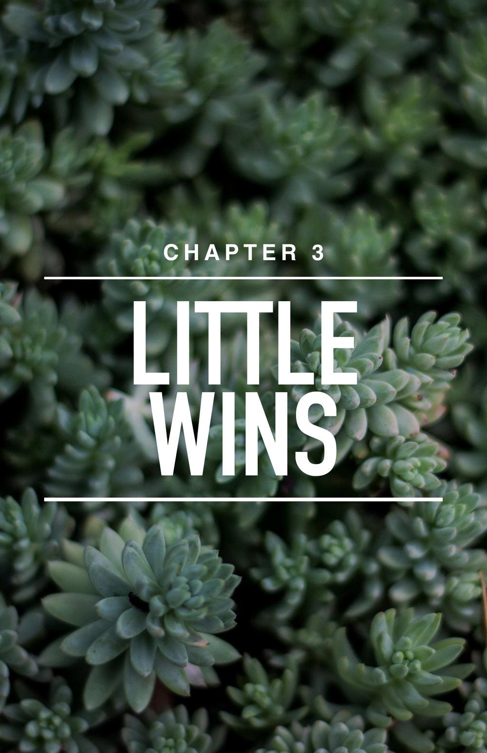 CH 3: Little Wins