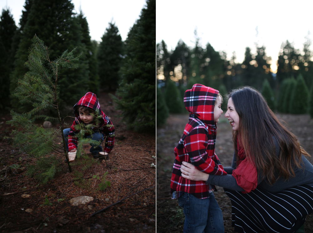 """L"" Family 