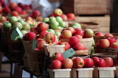apples farmers market.png