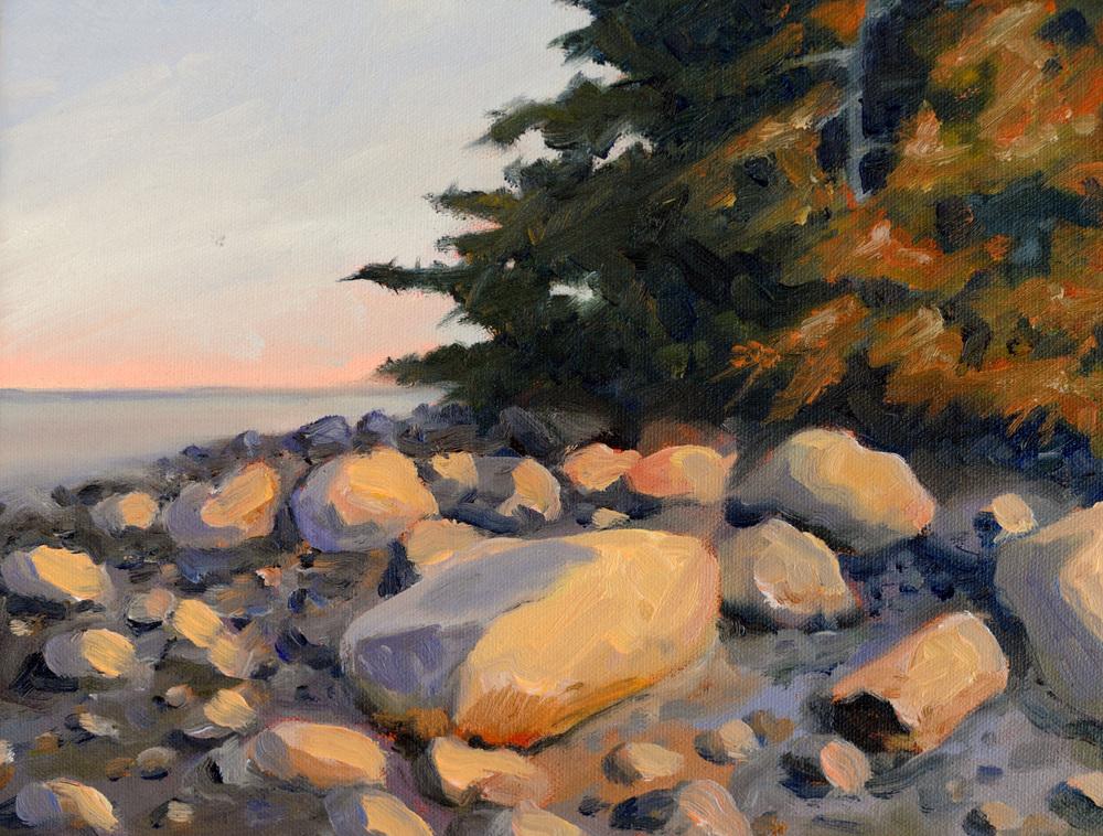 Rocks, Louds Island Study