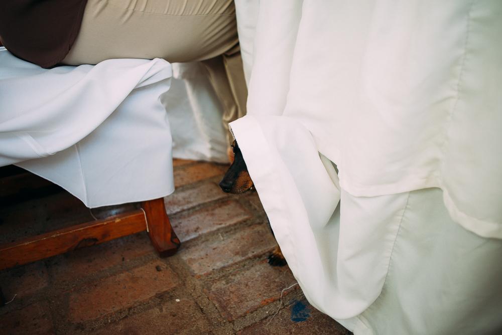 boda-casamiento-casamientodedia-bodadedia-AldeaLosCocos-wedding-wed-IglesiaNuestraSeñoradeNieva-Malagueño-Dress- (48).jpg