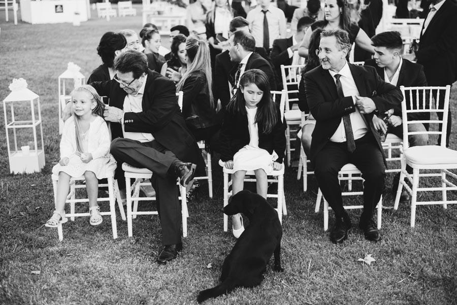 niños perros familiares en la misma ceremonia