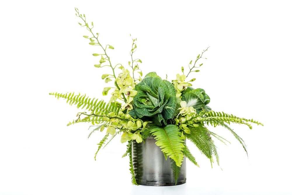venice beach: kale, orchids, ferns