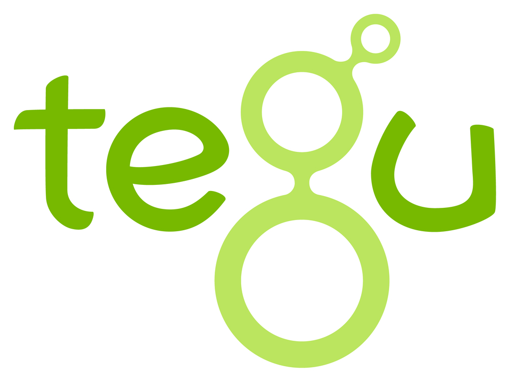 TEGU Darien, CT An innovative toy company committed to harnessing its profit to benefit the struggling nation of Honduras