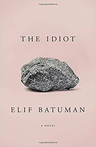 summer reading - the idiot