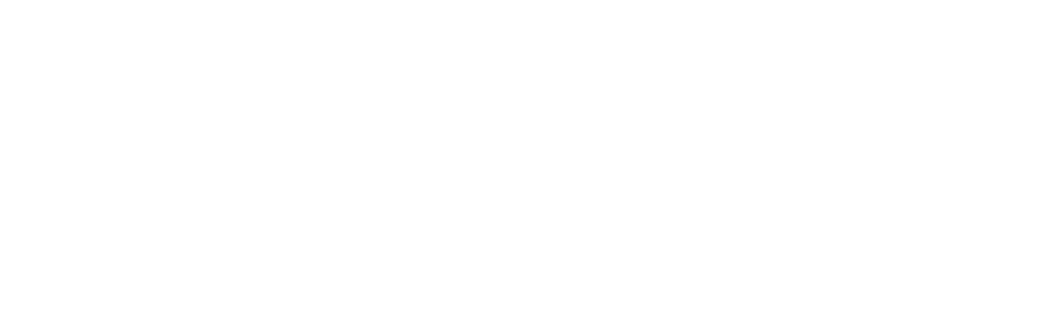 THE VALESCO GROUP