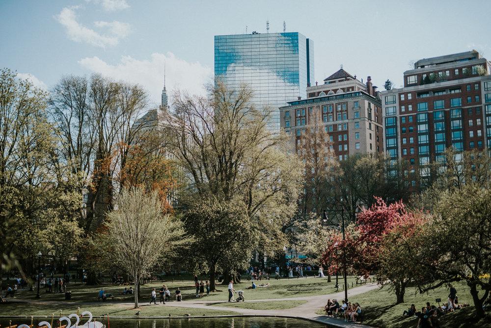 bostonshoot-28.jpg