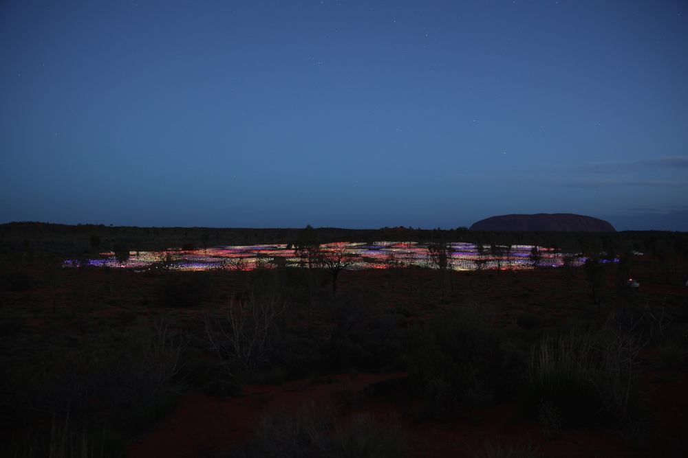 Photo courtesy Bruce Munro