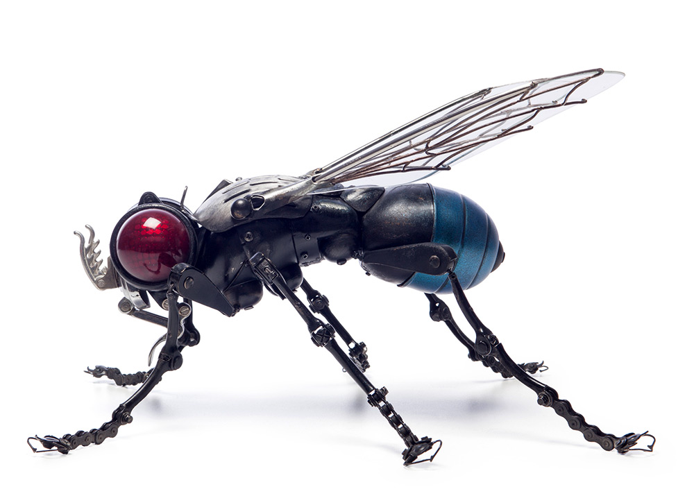 Fly , 47 x 40 x 27 cm.GAMBE: bracci del tergicristallo, freni bici, catene di bicicletta, piccole parti della macchina da scrivere;TESTA: motore ottico posteriore di un veicolo;PROBOSCIDE: cerniera per auto;ANTENNE: chiusure scarponi da sci;TORACE: faro moto;In alto: utensile da cucina degli anni '50.ALI: il vetro è ifermato in un supporto per parabrezza, le nervature delle ali sono realizzati con filo da saldatura;ADDOME: faro moto, parte plafoniera.