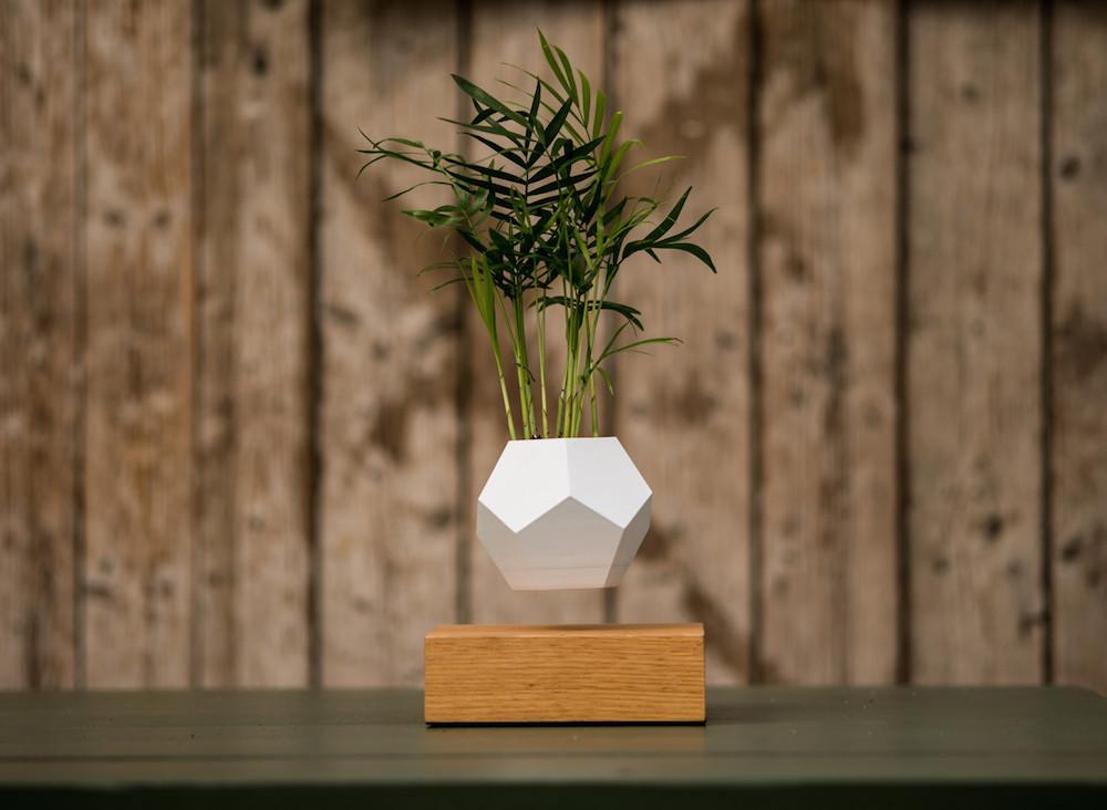 Popolare Lyfe, i nuovi vasi da fiori magnetizzati che permettono al tuo  OC97