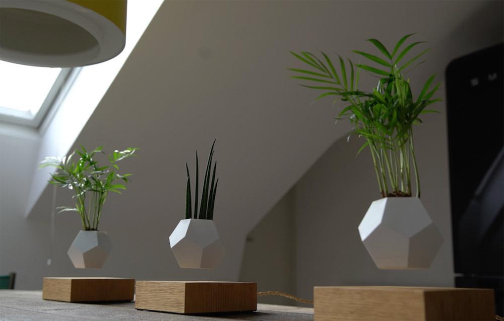 Ben noto Lyfe, i nuovi vasi da fiori magnetizzati che permettono al tuo  IW06