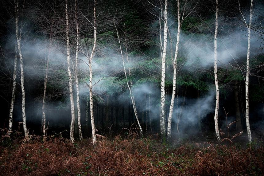 ellie-davies-wood-photos-04.jpg