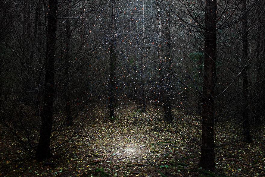 ellie-davies-wood-photos-06.jpg