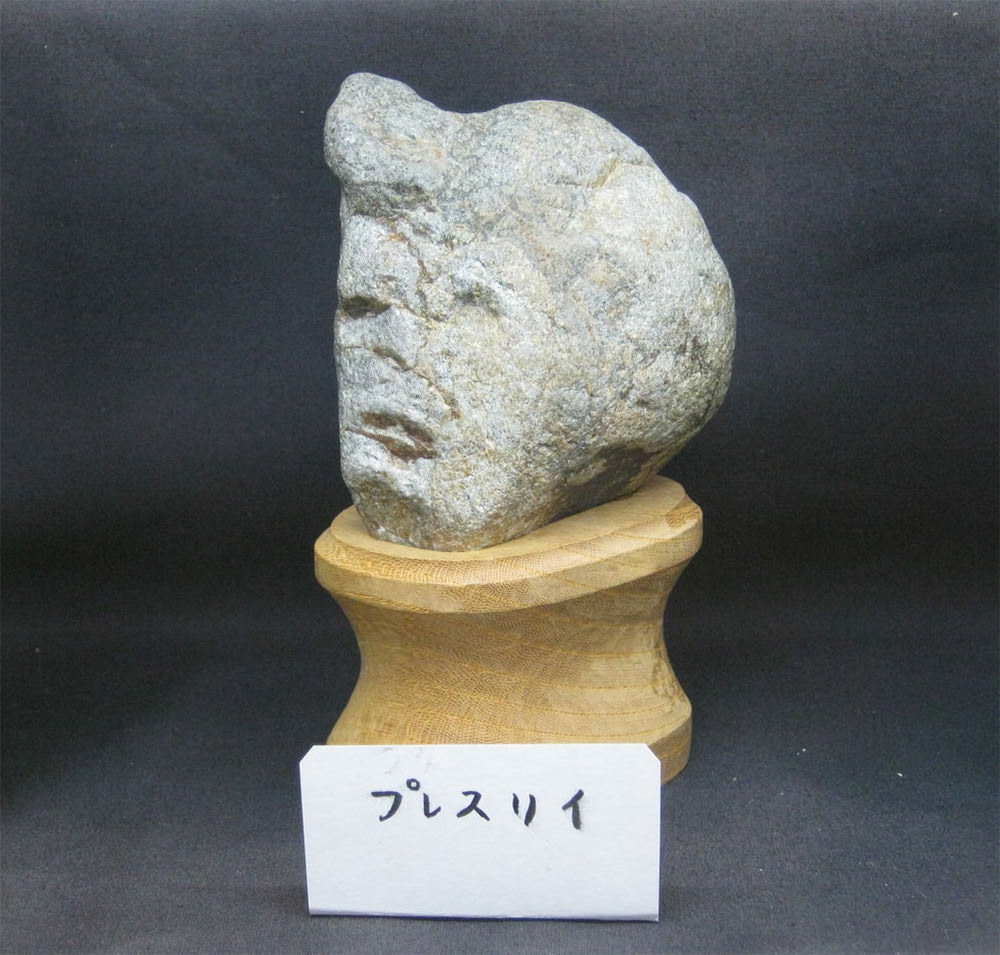 Il museo delle rocce che sembrano facce a Chichibu in Giappone; roccia Elvis Presley