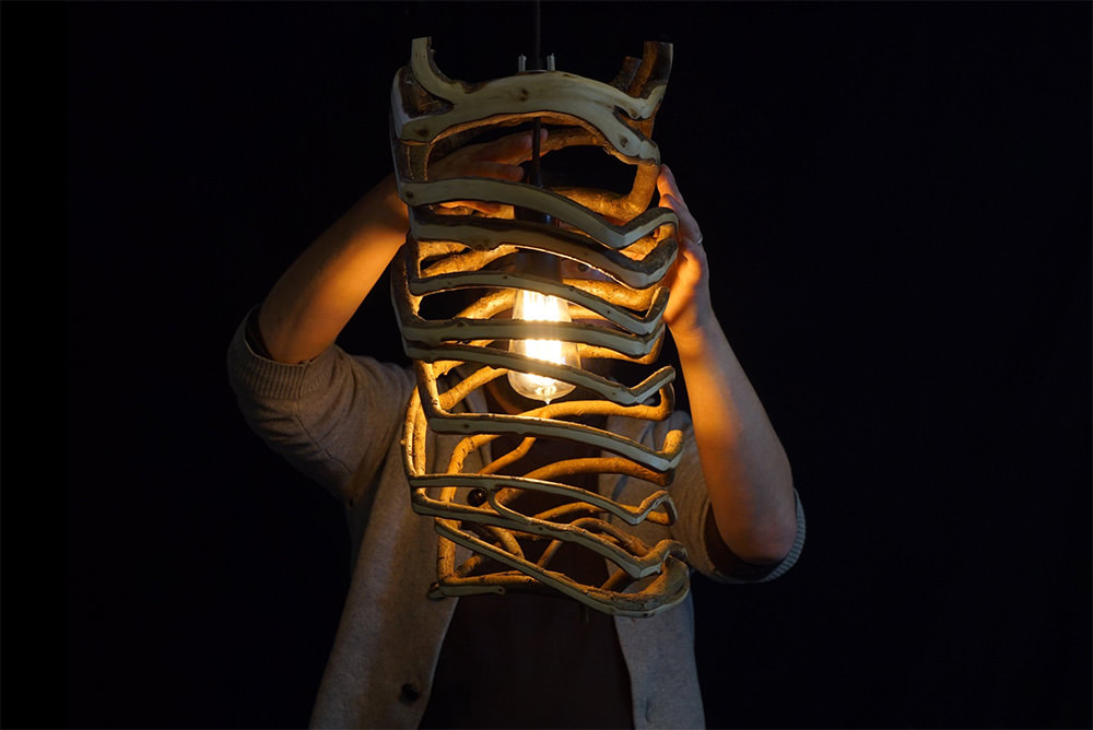 gavin-munro-full-grown-lampada